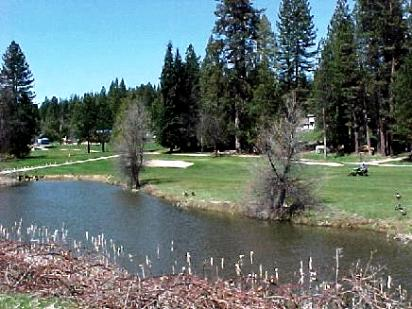 Golf Course Photo, Mace Meadow Golf & Country Club, Pioneer, 95666