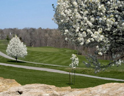 Golf Course Photo, Teetering Rocks Executive Links, Kansas City, 64138