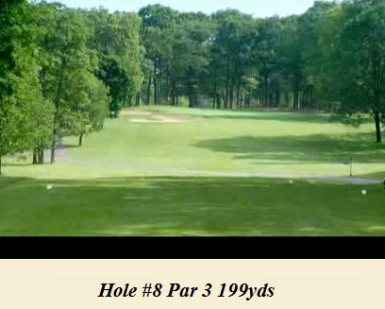 Golf Course Photo, Warwick Hills Golf Country Club, Grand Blanc, 48439