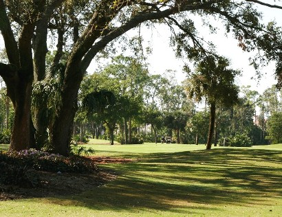 Golf Course Photo, Forest Country Club, The Bear Course, Fort Myers, 33908