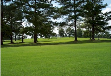 Cedars Golf & Country Club,Zebulon, Georgia,  - Golf Course Photo