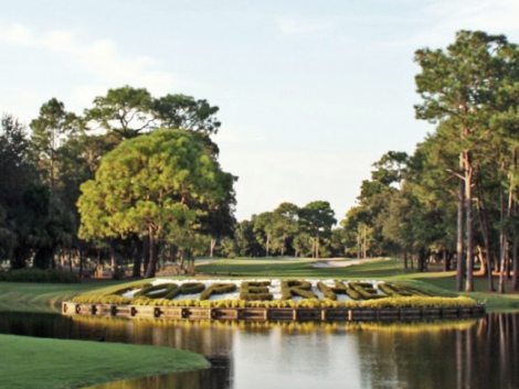 Innisbrook Resort & Golf Club, Copperhead Course , Palm Harbor, Florida, 34684 - Golf Course Photo