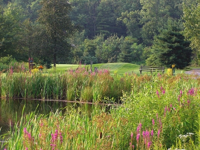 Blue Ridge Country Club,Harrisburg, Pennsylvania,  - Golf Course Photo