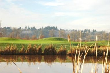 Sumner Meadows Golf Links, CLOSED 2013, Sumner, Washington, 98390 - Golf Course Photo