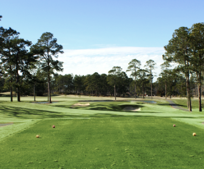 Hawk's Point Golf Club,Vidalia, Georgia,  - Golf Course Photo