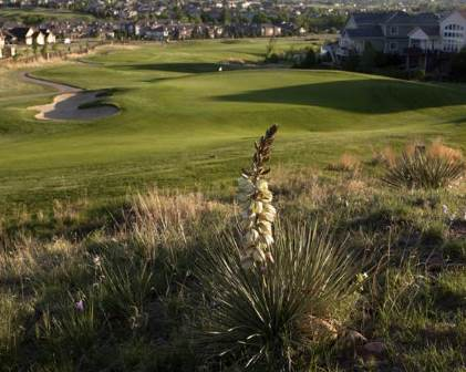 Saddle Rock Golf Course, Aurora, Colorado, 80016 - Golf Course Photo