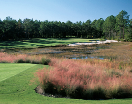 Camp Creek Golf Club,WaterSound, Florida,  - Golf Course Photo