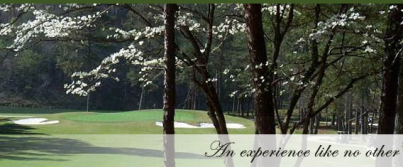 Pine Tree Country Club, Birmingham, Alabama, 35210 - Golf Course Photo