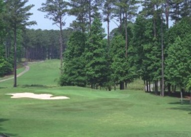 Golf Course Photo, Fox Creek Golf Club, Smyrna, 30080