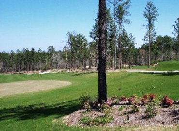Golf Course Photo, Shadow Ridge Golf Course, Hattiesburg, 39402