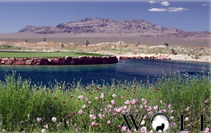 Golf Course Photo, Paiute Golf Resort, Wolf Course, Las Vegas, 89124
