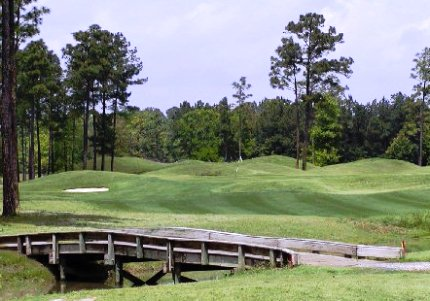 Pine Forest Country Club, Summerville, South Carolina, 29483 - Golf Course Photo