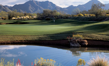 Golf Course Photo, McDowell Mountain Golf Course, Scottsdale, 85260