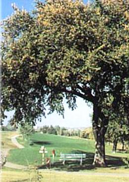 Clay Center Country Club,Clay Center, Kansas,  - Golf Course Photo