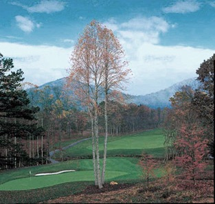 Golf Course Photo, The Cliffs At Walnut Cove Golf Course, Arden, 28704
