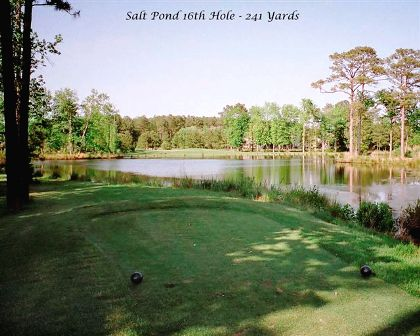 Golf Course Photo, Salt Pond Golf Course, The, Bethany Beach, 19930