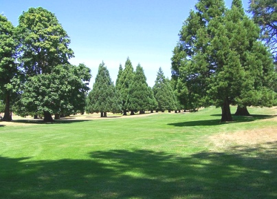 Golf Course Photo, Bayou Golf Club - Regulation Nine, Mcminnville, 97128