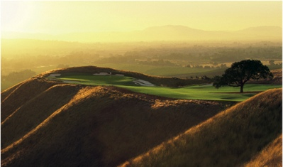 Course At Wente Vineyards,Livermore, California,  - Golf Course Photo