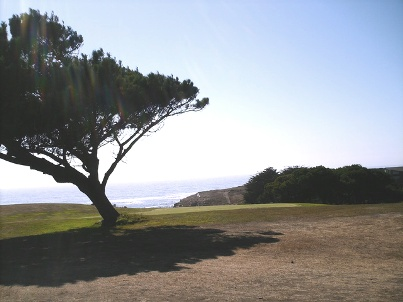 Golf Course Photo, Sea Ranch Golf Links, Sea Ranch, 95497