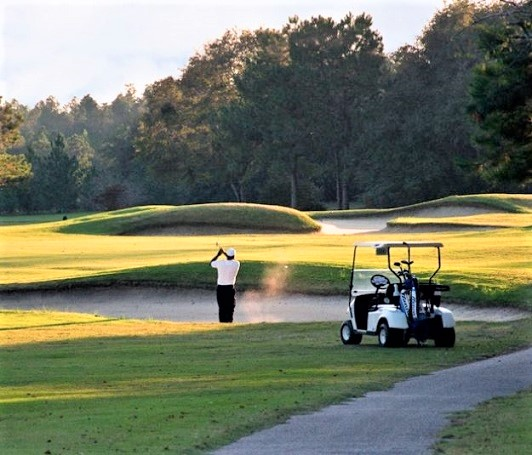 Applewood Golf Course, Keysville, Georgia,  - Golf Course Photo
