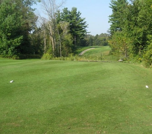 Bayou Golf Club, CLOSED 2013, Freeland, Michigan,  - Golf Course Photo