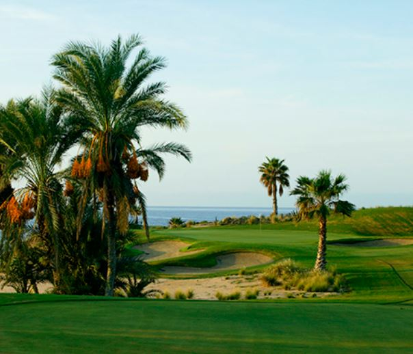 Cabo Real Golf Club, Los Cabos , Mexico,  - Golf Course Photo