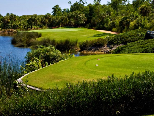 Grey Oaks Golf & Country Club, Estuary Golf Course, Naples, Florida,  - Golf Course Photo