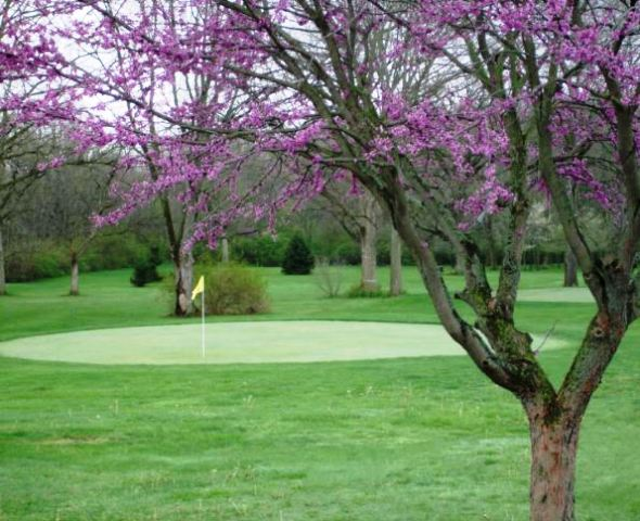 Logans Run Family Golf Club,Logansport, Indiana,  - Golf Course Photo