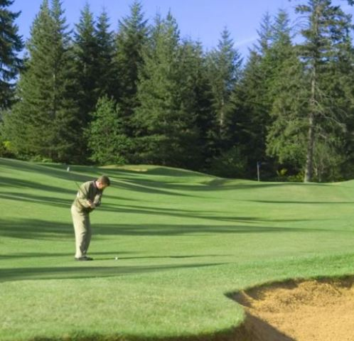 Mccormick Woods Golf Course,Port Orchard, Washington,  - Golf Course Photo
