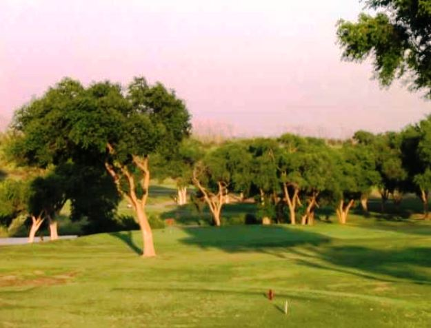 Meadowbrook Golf Complex, Creek Course, Lubbock, Texas,  - Golf Course Photo