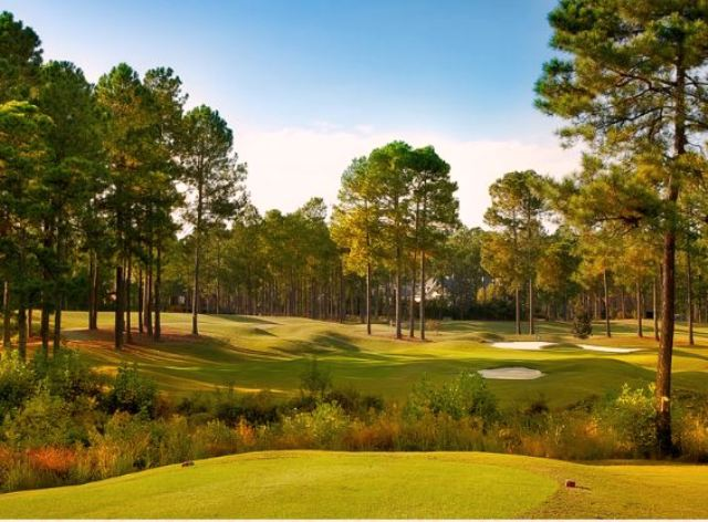 Golf Course Photo, Mid South Club, Pinehurst, 28374