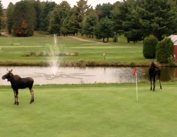 Orleans Country Club,Orleans, Vermont,  - Golf Course Photo