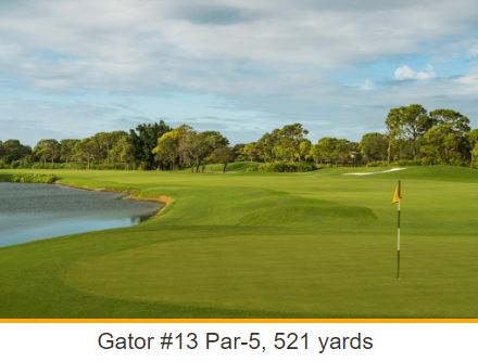 Golf Course Photo, Pelicans Nest Golf Club, Gator Golf Course, Bonita Springs, Florida, 34134