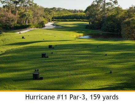 Golf Course Photo, Pelicans Nest Golf Club, Hurricane Golf Course, Bonita Springs, 34134
