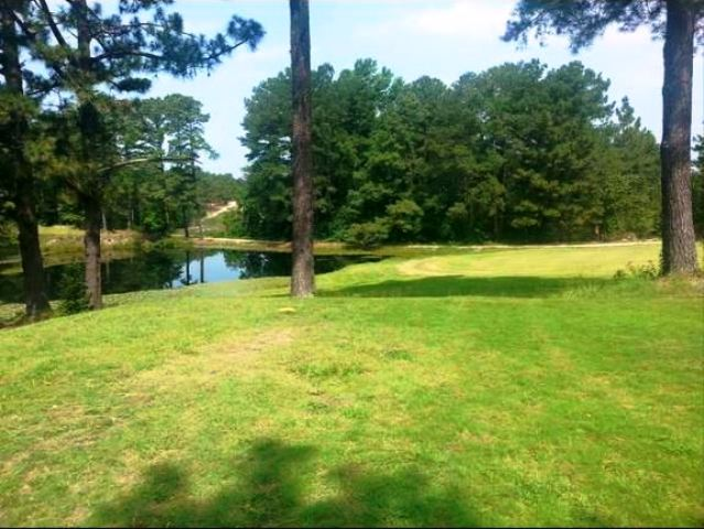 Ponderosa Golf Club CLOSED 2015,Olivia, North Carolina,  - Golf Course Photo