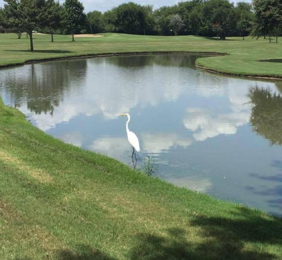 San Jacinto College Golf Course, CLOSED 2016