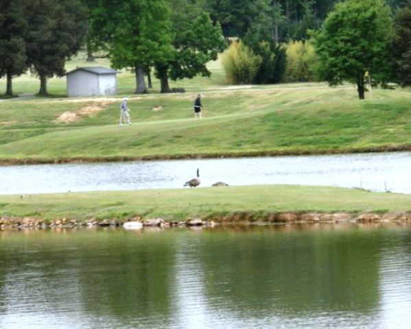 Sandy creek staley north carolina golf course for Sandy creek