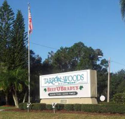 Golf Course Photo, Tarpon Woods Golf Club, Palm Harbor, 34685