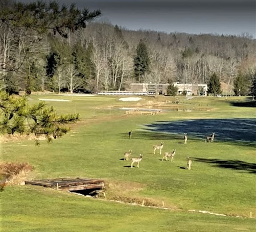 Twin Falls State Park Golf Course
