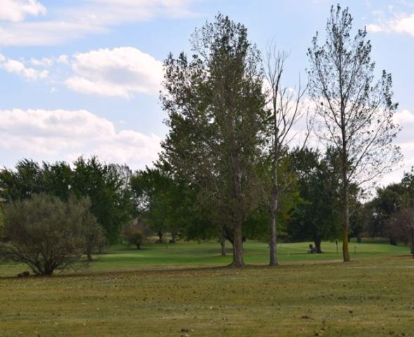 Golf Course Photo, Twin Oaks Golf Course, Saint Johns, Michigan, 48879