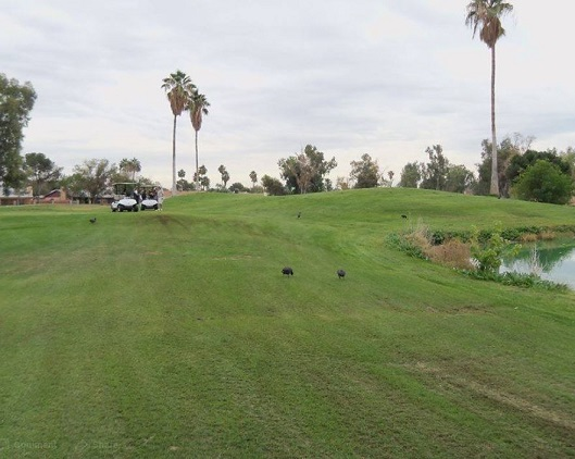 Villa De Paz Golf Course, CLOSED 2013, Phoenix, Arizona, 85037 - Golf Course Photo