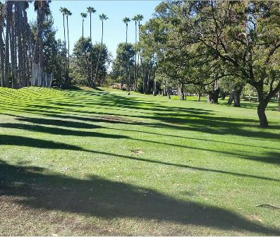 Weddington Golf Course,Studio City, California,  - Golf Course Photo