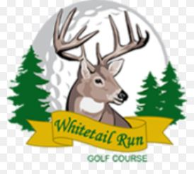 Golf Course Photo, Whitetail Run Golf Course, Wadena, 56482