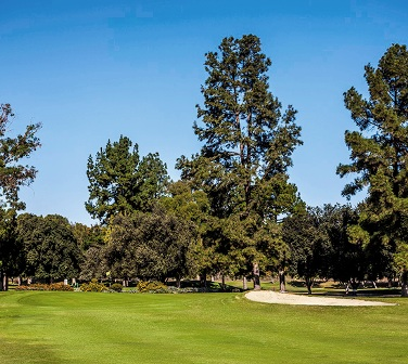 Balboa Municipal Golf Course,Encino, California,  - Golf Course Photo
